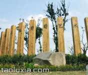 上海马陆葡萄艺术村