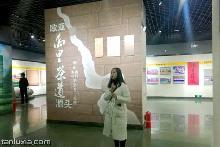 赤壁市博物馆景点:万里茶道展厅