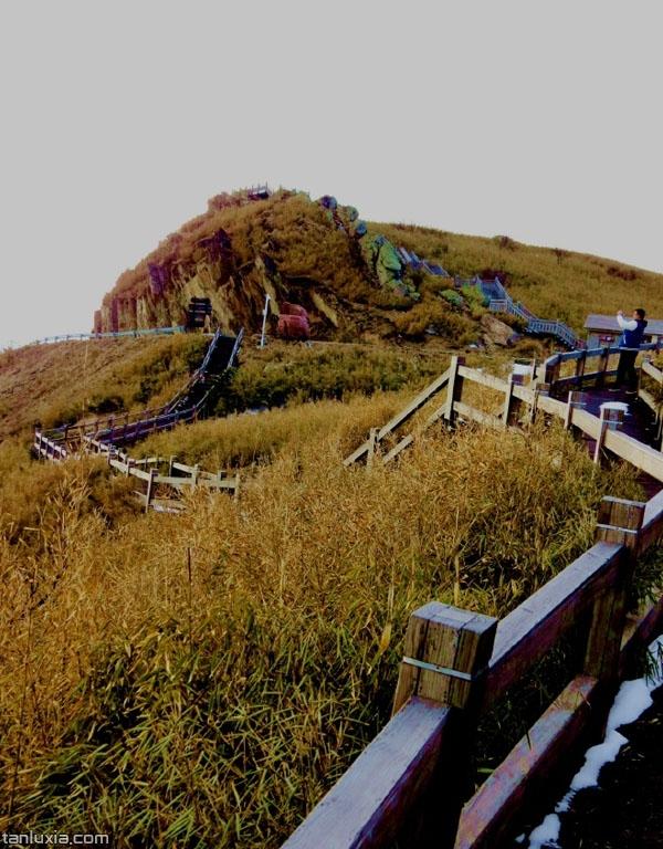 神農頂觀景梯