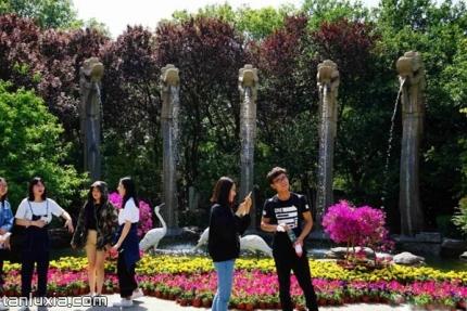 五龙潭公园景点:五龙喷泉