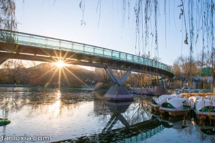 泉城公園景點:觀景橋