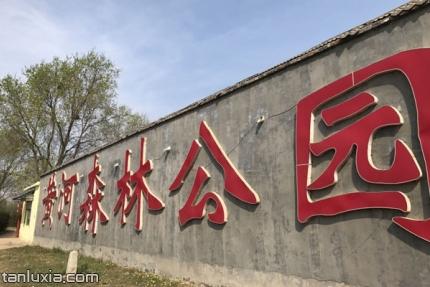 濟南黃河森林公園景點:濟南黃河森林公園入口