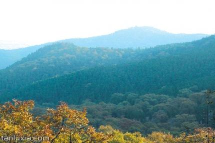 萊蕪華山森林公園景點:華山之巅