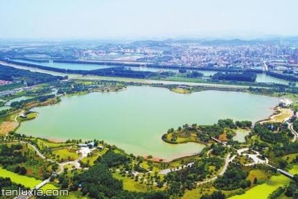 平陰玫瑰湖濕地景點:玫瑰湖