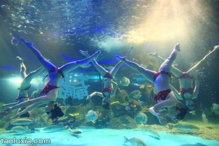 大明湖海底世界景点:美人鱼水下芭蕾
