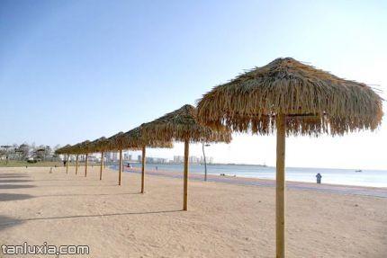 灵山湾海滨公园景点:海滩边的遮阳伞