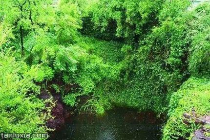 即墨龙山风景区景点:龙山天井
