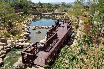 青島竹子庵公園景點:800米水系木棧道