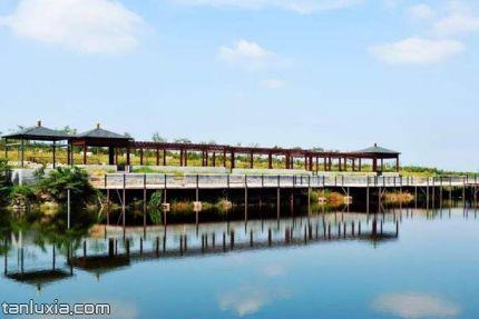 青島蓮花山莊景區景點:親水長廊