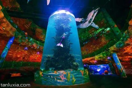 海上嘉年华主题乐园景点:通天鱼缸