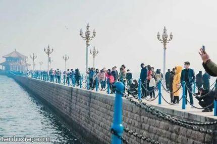 青島棧橋景區景點:棧橋