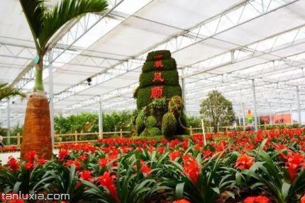 靈珠山植物園景點:植物觀賞區