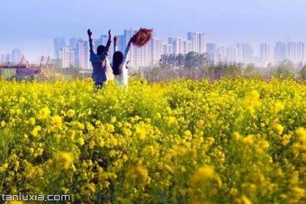 城市陽臺景區景點:青島西海岸生態觀光園