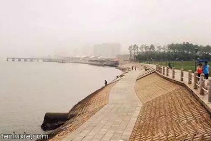 唐島海濱海公園景點:海岸線