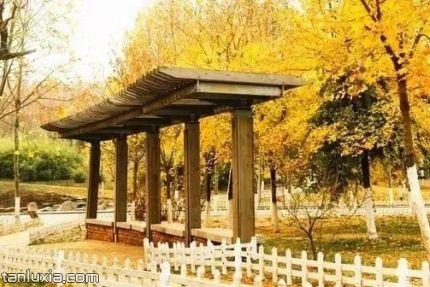青島太平角景點:太平角公園