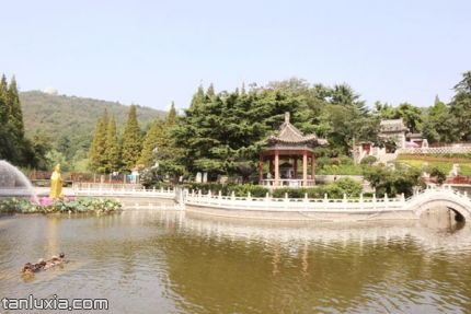 青島湛山寺景點:放生池