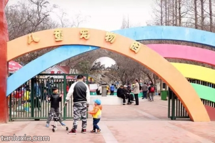 青岛动物园景点:儿童宠物园