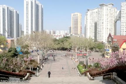 青島貯水山兒童公園景點:廣場