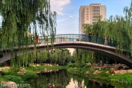 青島文化公園景點:單孔橋