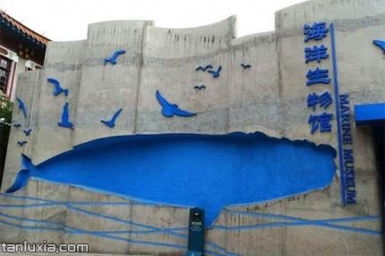 青岛海洋生物馆景点:青岛海洋生物馆入口