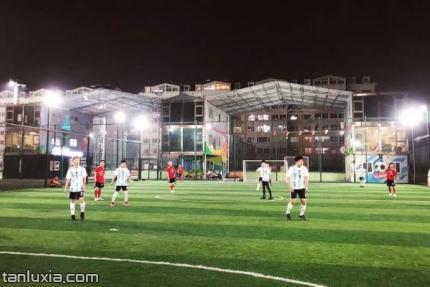 晟枫运动公园景点:晟枫运动公园球场