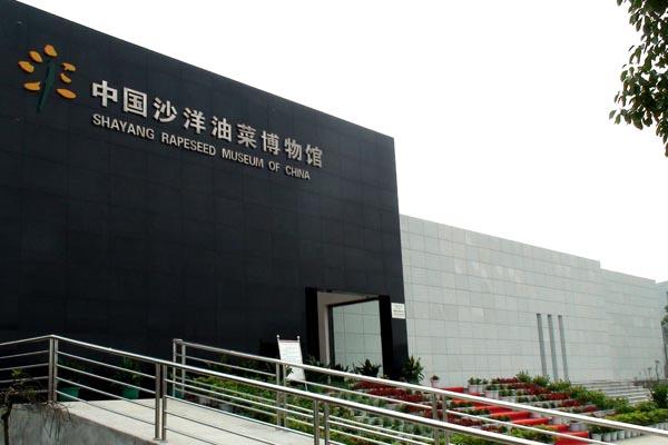 中国沙洋油菜博物馆主楼